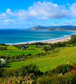 Great Barrier Island